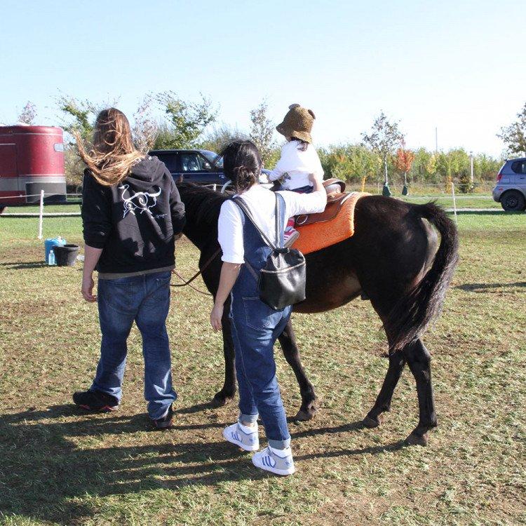 0020 IMG 7074 1617731326 big Pony Rides
